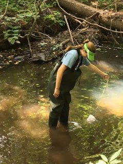 Field work at the Sparkill Creek