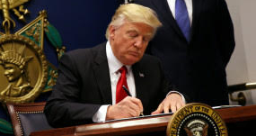 Temporary Travel Ban is Rational Immigration Policy