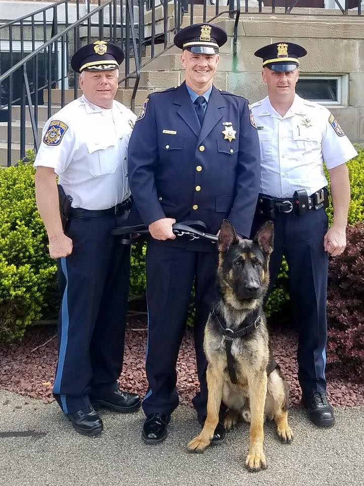 Rockland Sheriff's Office welcomes Roscoe to the team