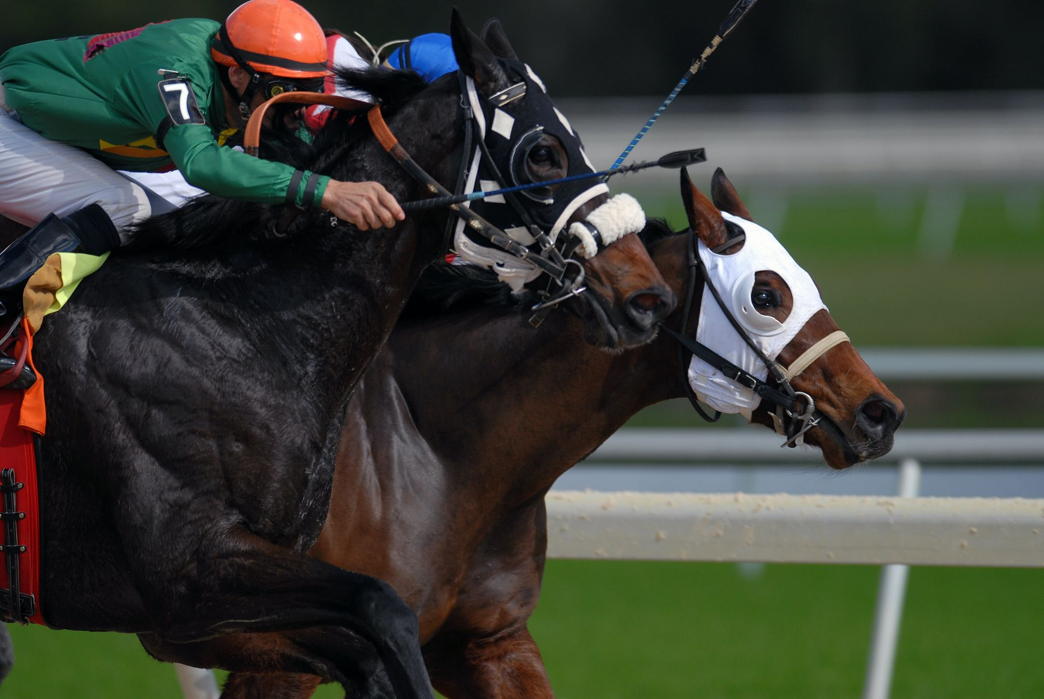 Does America or the UK have better horse racing events?